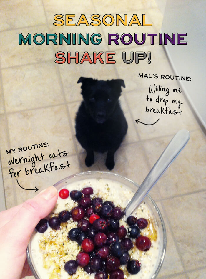 Seasonal Morning Routine Shake Up!