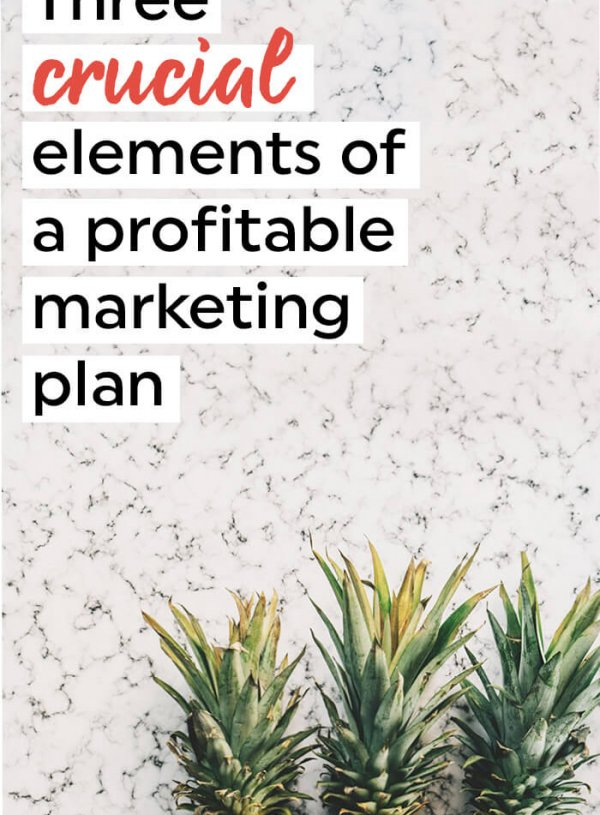 3 crucial things you need to make a profitable marketing plan